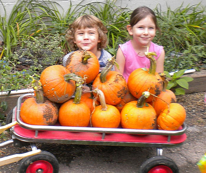 Proud kindergartners showing their pumpkin harvest from the school garden.